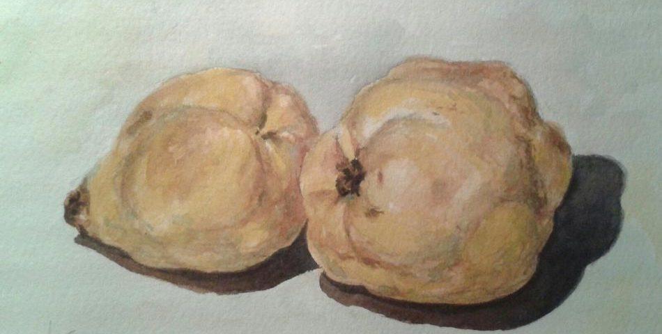 acuarela-juan-ramon-avalos-membrillos