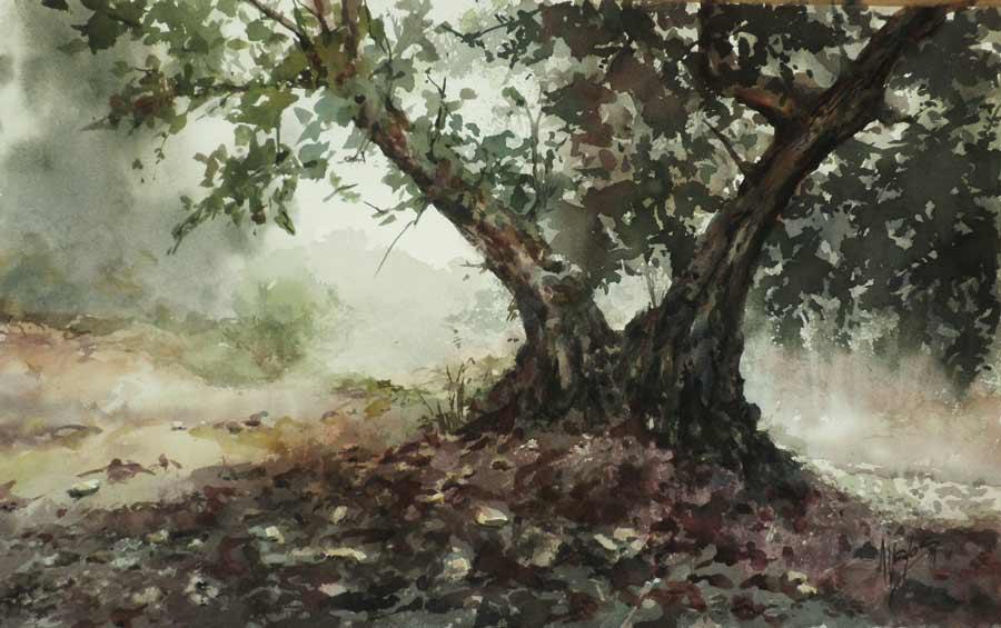 acuarela-juan-ramon-avalos-olivo-olivo