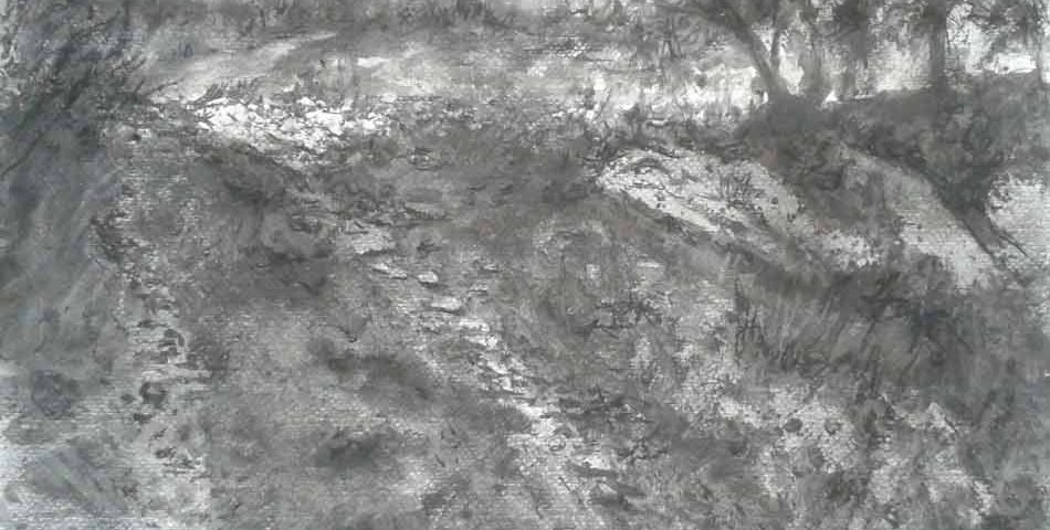 grafito-juan-ramon-avalos-retazos-del-campo